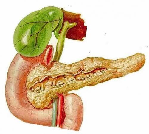 Что означает хронический панкреатит
