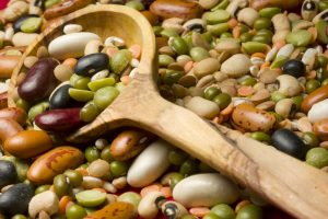 Питание бобовыми