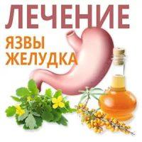 Лечение язвы желудка травами