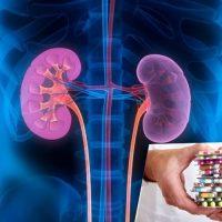 Действие антибиотиков на почки